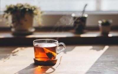 Melyik teát próbálnátok ki?